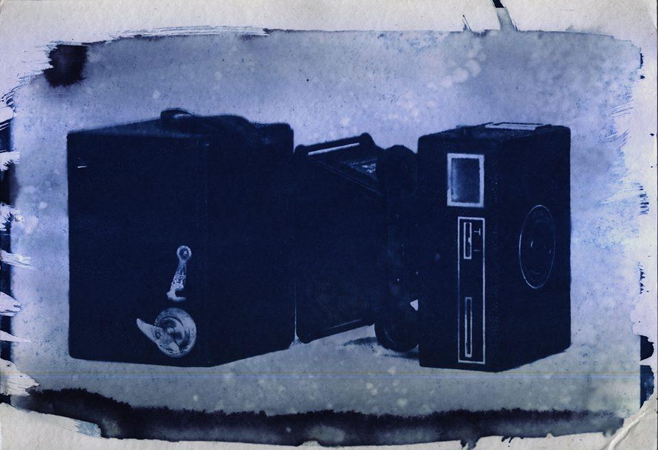 brownie-cyanotype