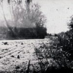 Road - Pinhole camera